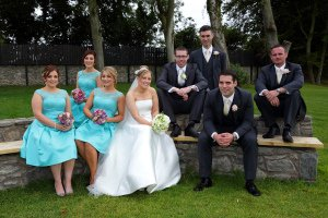 Wedding Party photographed at Castle at Darver.